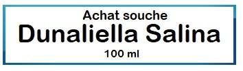 Dunaliella Salina
