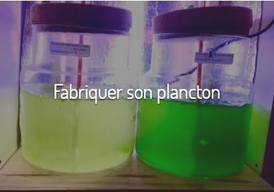 Réacteur plancton